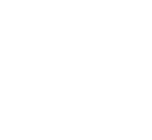 Ray Connor lives with his family in Western Massachusetts. He is an avid reader of novels of all types. Among his favorite authors are: - Stephen King - Robert Ludlum - James Patterson - Tom Clancy - J.K. Rowling - J.R.R Tolkien - Clive Cussler -Jeff Kinney - and many many more!!!